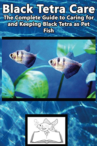 Black tetra care the complete guide to caring for and for Fish and pets unlimited