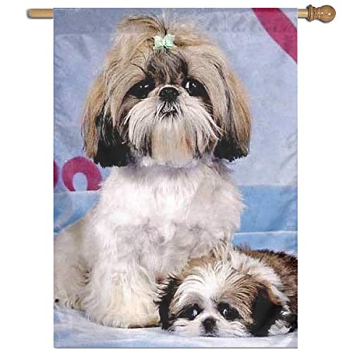 MINIOZE Shih Tzu Themed Welcome Extra Big Large Jumbo for Outdoor Outside Decorations Ornament Picks Garden Yard Traditional Decorative Front 27