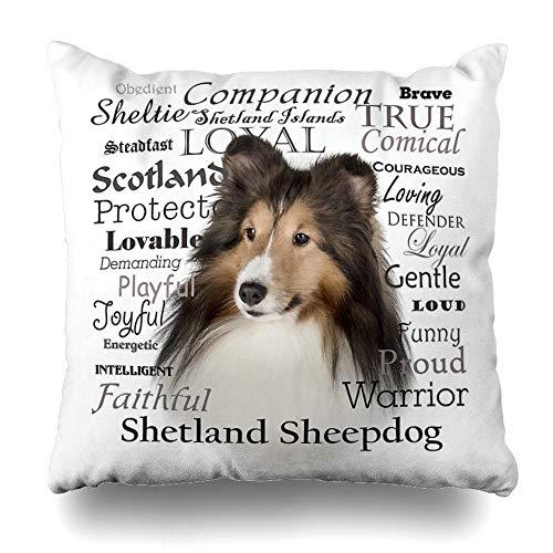 Ahawoso Throw Pillow Cover Square 16x16 Inches Sheltie Traits Decorative Pillow Case Home Decor Pillowcase