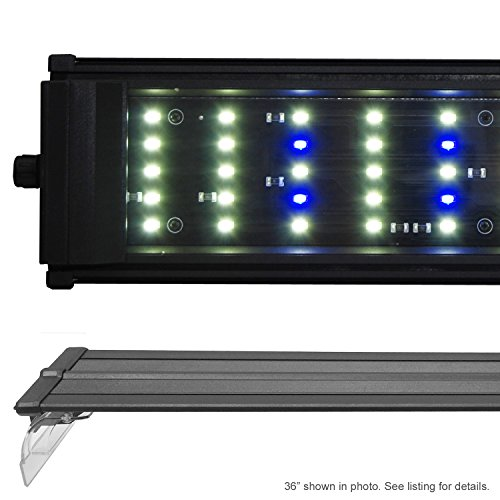 Beamswork 48'' DA 120 6500K LED Aquarium Light Pent Freshwater Plant Discus 120x 0.50W by Beamworks