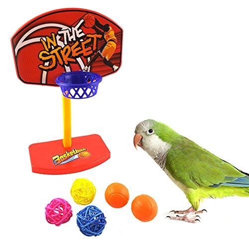 Jocestyle Parrot Basketbal Pet Birds Ball Chew Toy Hoop Prop