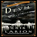 Summary & Analysis: The Devil in the White City  Audiobook by Book Junkie Narrated by Doug Greene