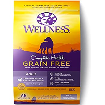 Wellness Complete Health Natural Grain Free Dry Dog Food, Chicken, 12-Pound Bag