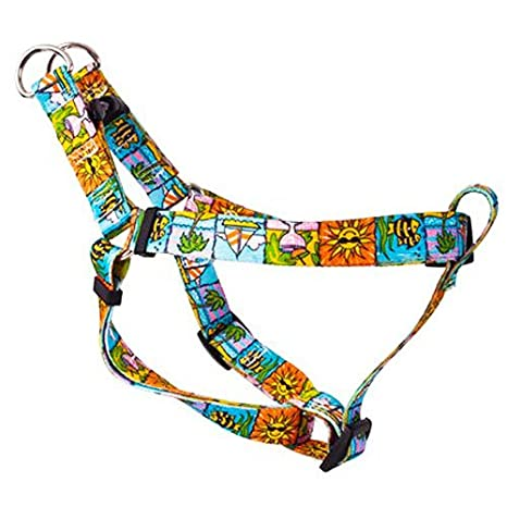 Seaside de poner Arnés | Amarillo Diseño De Perro: Amazon.es ...