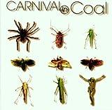 Fear Not Carnival in Coal by Carnival In Coal