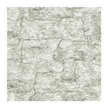 York Wallcoverings LM7987 Lake Forest Lodge Birch Bark Wallpaper, Off White by York Wallcoverings