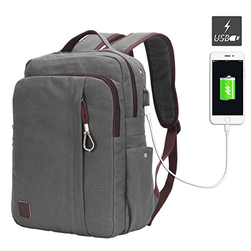 Hynes Eagle Professional Slim Laptop Backpack with USB Interface Fits 13.3 Inch Computer Gray