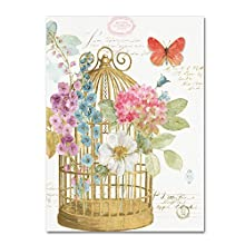 Rainbow Seeds Romantic Birdcage II by Lisa Audit, 14x19-Inch Canvas Wall Art