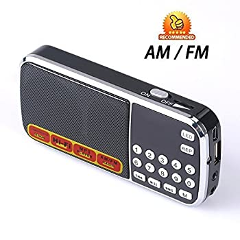 Easycare Portable Mini AM FM Radio Clear Speaker Music Player (L088AM, Black)