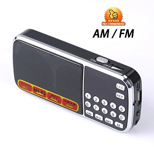 Easycare Portable Mini AM FM Radio Clear Speaker Music Player (L088AM, Black) by EasyCare