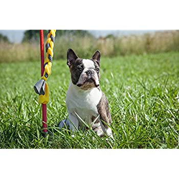 Tether Tug Small/Puppy Toy Rope, Assorted Colors