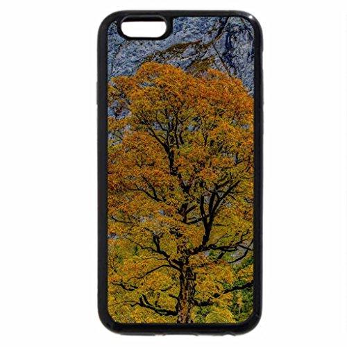 iPhone 6S Plus Case, iPhone 6 Plus Case (Black & White) - Gorgeous Autumn
