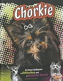 Chorkie, Sheila Hammer, 1429676698