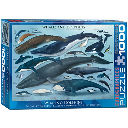 EuroGraphics Whales and Dolphins Puzzle (1000-Piece) (Whale Jigsaw)