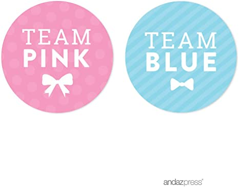 Team Pink Blue Baby Shower Party Game Stickers Bag