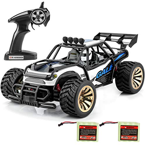 Distianert 1:16 Scale Electric RC Car Off Road Vehicle 2.4GHz Radio Remote...