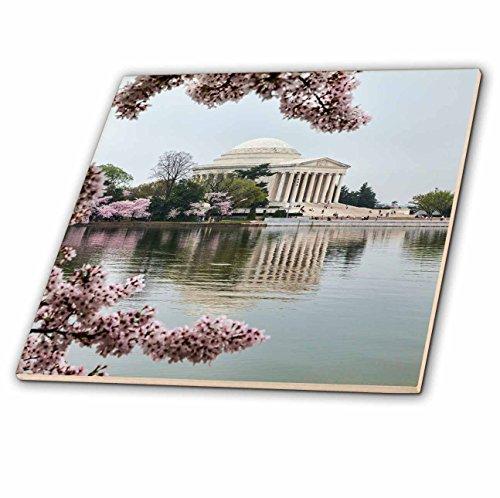 3dRose Danita Delimont - Memorials - Washington DC, Jefferson Memorial and Tidal Basin with Cherry Blossoms - 8 Inch Ceramic Tile (ct_278847_3)
