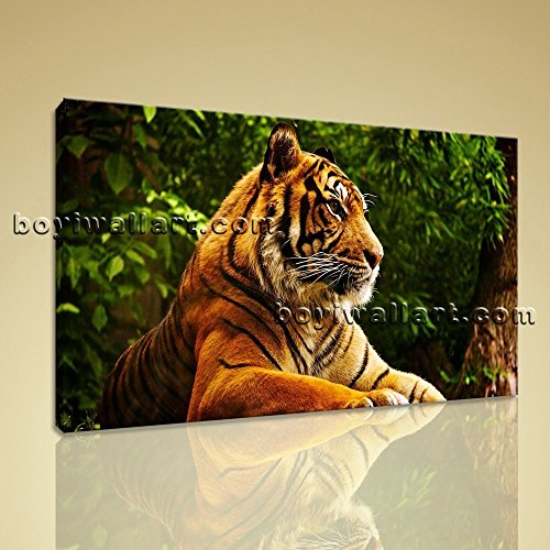Framed Canvas Print Bengal Tiger Big Cat Animal Wild Jungle Wall Art Picture Extra Large Wall Art, Gallery Wrapped, by Bo Yi Gallery 36