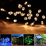 Lychee® 55ft 100LED Waterproof Solar Fairy String Lights for Outdoor Room Home Garden Christmas Party Decoration (Warm White)