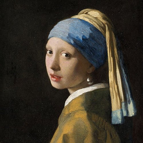 4 Paper Napkins for Decoupage - 3-ply, 33 x 33cm - Girl with a Pearl Earring, Pack of 20 33 x 33cm Tigers on the Loose