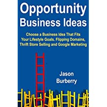 Opportunity Business Ideas: Choose a Business Idea That Fits Your Lifestyle Goals. Flipping Domains, Thrift Store Selling and Google Marketing