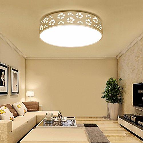 Xi_Xi XI Snowflake Round Ceiling Lamp Led Modern Simple Bedroom Lamps Acrylic Living Room Study Balcony Lighting,42cm,Trichromatic light