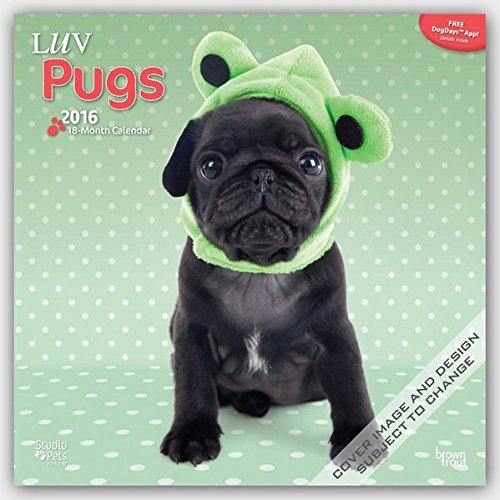 Luv Pugs 2016 - Möpse - 18-Monatskalender mit freier DogDays-App: Original Myrna-Kalender [Mehrsprachig] [Kalender]