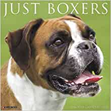 Boxer Dog Small 2020 dog show diary with show dates A6 pocket size