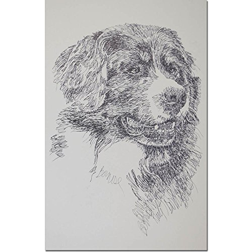 Stephen Kline Bernese Mountain Dog Personalized Lithograph by