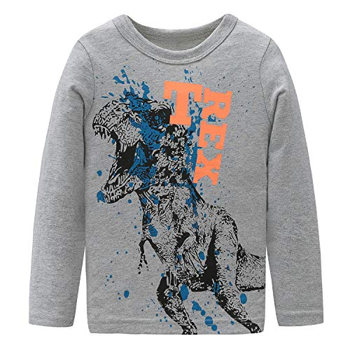 HowJoJo Big Boys Dinosaur T Shirts Cotton Long Sleeve Shirt Graphic Tees Gray ()