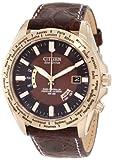 Citizen Men's CB0003-08X World Perpetual A-T Watch