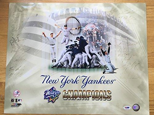 New York Yankees Team Autographed 16x20 Photo w/ PSA/DNA (New York Yankees Team Pictures)