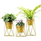 XiYunHan Flower Pot, Northern Europe Metal Geometry Iron Art Vase Container Flower Stand Golden Flower House Home Decoration Basket Plant Vertical Landing Fake Ornaments Bracket Pot Gardening 3 Size