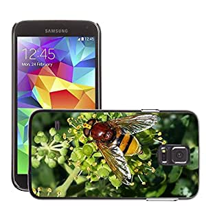 GoGoMobile Slim Protector Hard Shell Cover Case // M00124015 Hoverfly Insect Pollination Sprinkle // Samsung Galaxy S5 S V SV i9600 (Not Fits S5 ACTIVE)