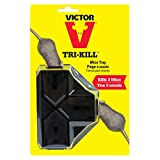Victor Tri-Kill Mouse Trap, 1-Pack