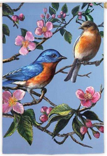 Bluebird Dogwood Flag (Garden Size)