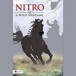 Nitro Audiobook