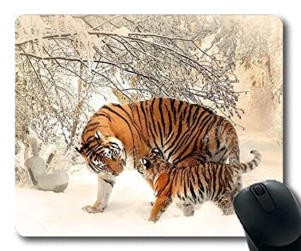 a68413276b498 Amazon.com : Wild Animal Mouse Pads, Animal Photography Animals Big ...