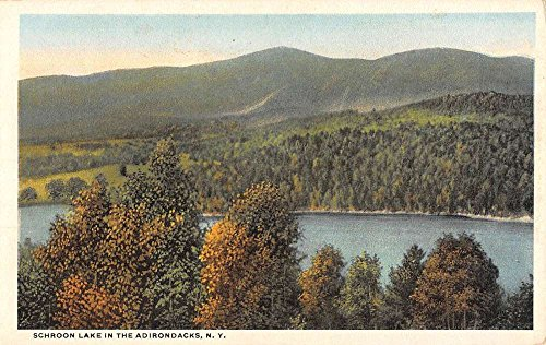 Birdseye Postcard View (Schroon Lake New York Adirondacks Birdseye View Antique Postcard K58215)