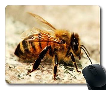 Alfombrilla de ratón con miel de abeja Tamaño de 9 pulgada (220 mm) X 7 Inch (180 mm): Amazon.es: Oficina y papelería