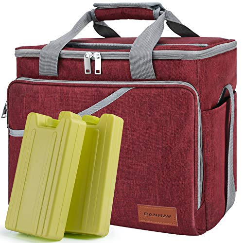 Cooler Bag 40-Can Large, Insulated Soft Sided Cooler Bag with 2 Ice Packs Leak-Proof for Outdoor Travel Hiking Beach Picnic BBQ Party, Red (Easy Snacks To Bring To A Party)