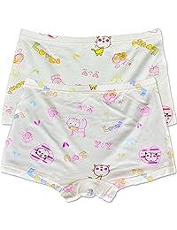 Big Girl's Hipster Panties Super Soft Briefs Underwear 2 Pair Set