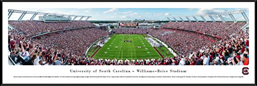 (South Carolina Football End Zone - 40.25x13.75-inch Standard Framed Picture by Blakeway Panoramas)