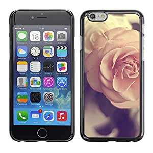 Plastic Shell Protective Case Cover    Apple iPhone 6    Pink Vintage Spring Love @XPTECH