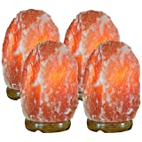 Indus Classic Himalayan Rock Crystal Salt Lamp, Set of 4, 7-10 lbs each