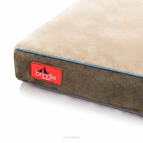 Brindle-Soft-Shredded-Memory-Foam-Dog-Bed-with-Removable-Washable-Cover