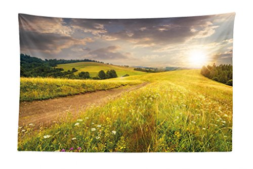 Lunarable Nature Tapestry, Sunset on The Meadow Rural Country Flower Field and Trees Idyllic Scene, Fabric Wall Hanging Decor for Bedroom Living Room Dorm, 45 W X 30 L inches, Lime Green Pale Brown