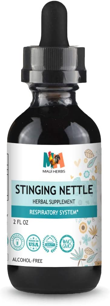 Stinging Nettle Tincture 2 FL OZ Alcohol-Free Liquid Extract, Organic Stinging Nettle Leaf and Root Urtica Dioica