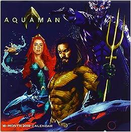 Aquaman 2019 Calendar por Trends International epub