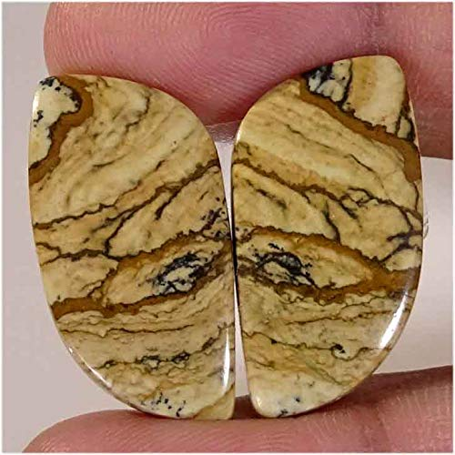 EMARTWALA Wonderful Designer 29.25CtNatural Picture Jasper Earring Pair Fancy Cab Gemstone ()